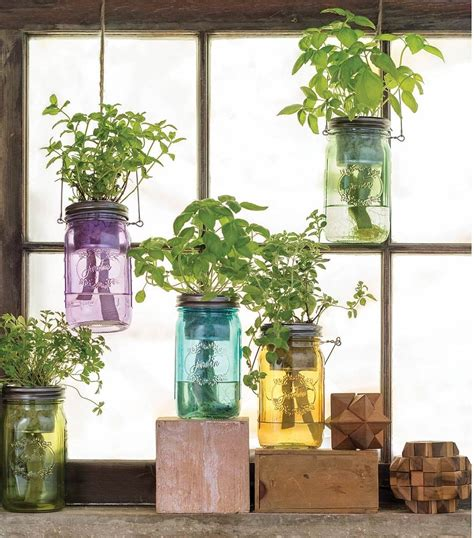 hang  mason jar indoor herb garden