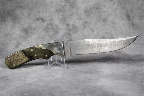 etching knife rigid rg 27 fixed blade bowie knife with deer woods etching current market value