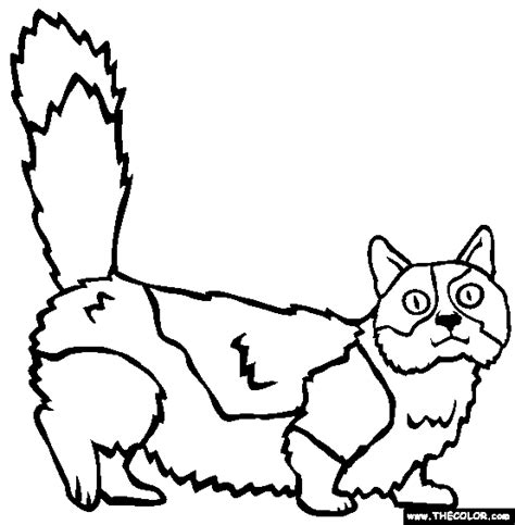 cats  coloring pages page