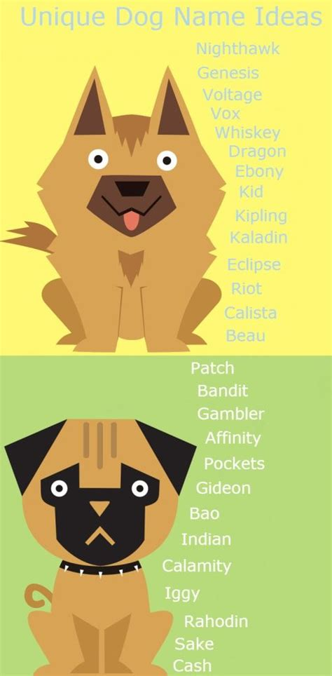 names for dogs unique names