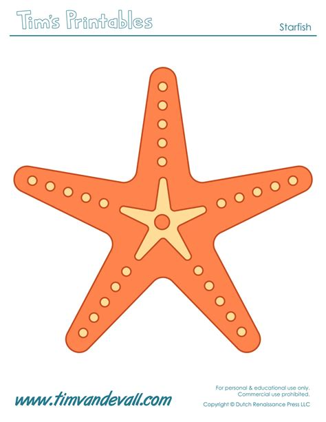 starfish template starfish template sea templates for preschool