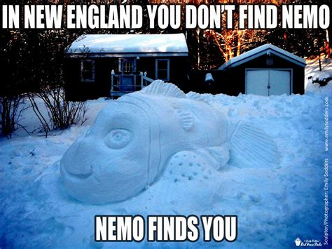 snow storm nemo meme by emilysodders on deviantart