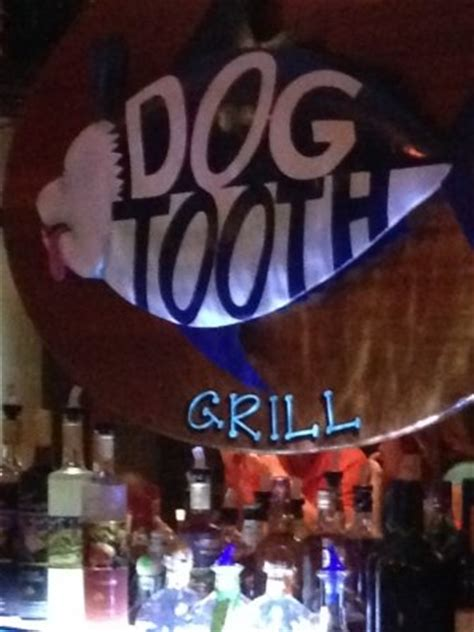 tooth wildwood dogtooth bar grill at picture of tooth bar grill wildwood tripadvisor