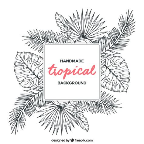 sketch free sketches tropical plants background vector free