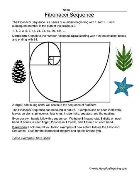 number pattern teaching ideas fibonacci worksheet bluegreenish