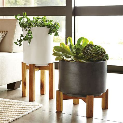 Planter Stands Indoors by The Plant That Keeps On Giving Element Of Chic