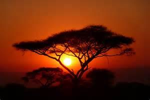 afrikanische sonnenuntergangs erinnerungen pictures to pin