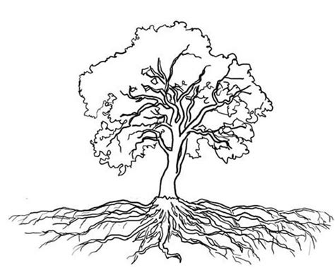 tree stem coloring page tree with roots coloring page body art pinterest roots