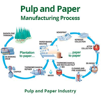 pulp and paper equipment quality chemical reactions paper chemistry