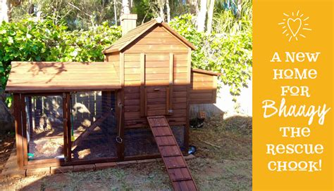 Backyard Chicken Coops Australia Taj Mahal Giveaway Winner 2016 Chicken Houses