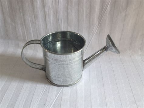 free shipping tin watering cans flower metal small