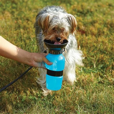 water for dogs aqua the no mess water bottle for dogs on the go