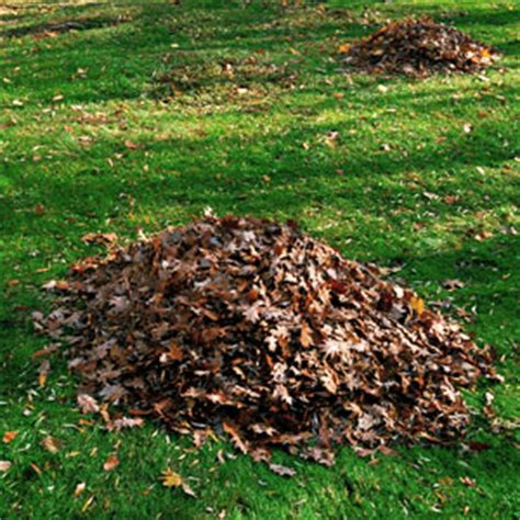 what are the types of mulch ryco landscaping