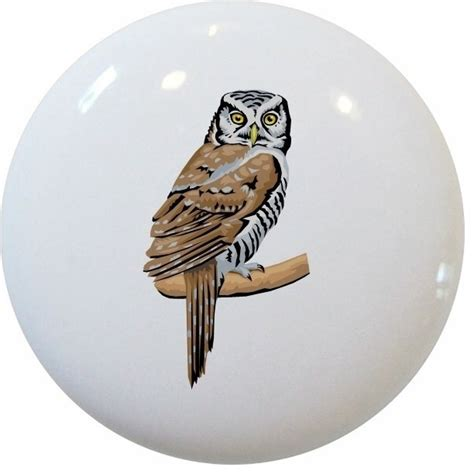 Owl Drawer Knobs by Owl Ceramic Pull Handle Knob Traditional Cabinet And