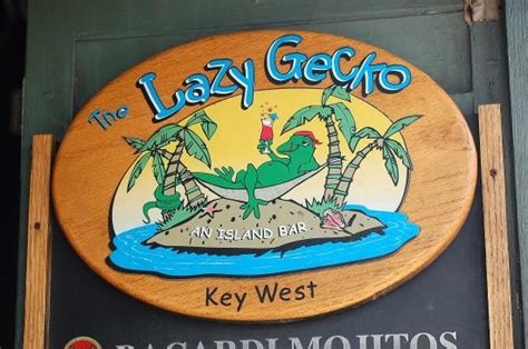 lazy key west photo1 jpg picture of lazy gecko key west tripadvisor