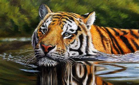 Painting Tiger wildlife prints limited edition wildlife prints available to buy on ebay