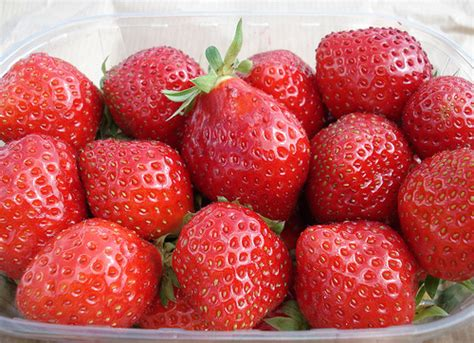 carbohydrates in 6 strawberries what are carbohydrates