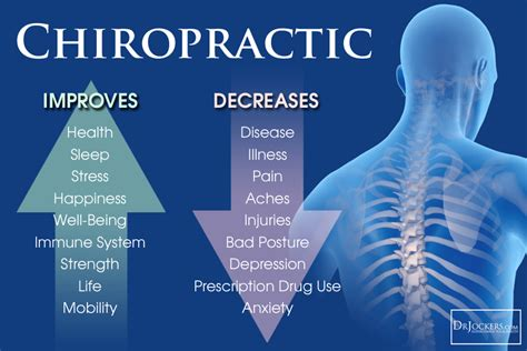 Description Of A Chiropractor by Chiropractic Improves Anti Oxidant Levels