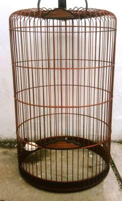 Pakan Branjangan Bahan tips memilih dan merawat sangkar burung branjangan om kicau