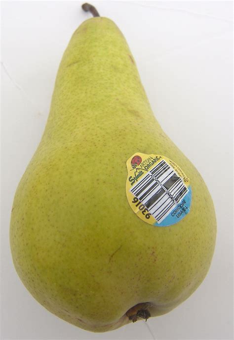 12 best images about pear concorde pears eat like no one else
