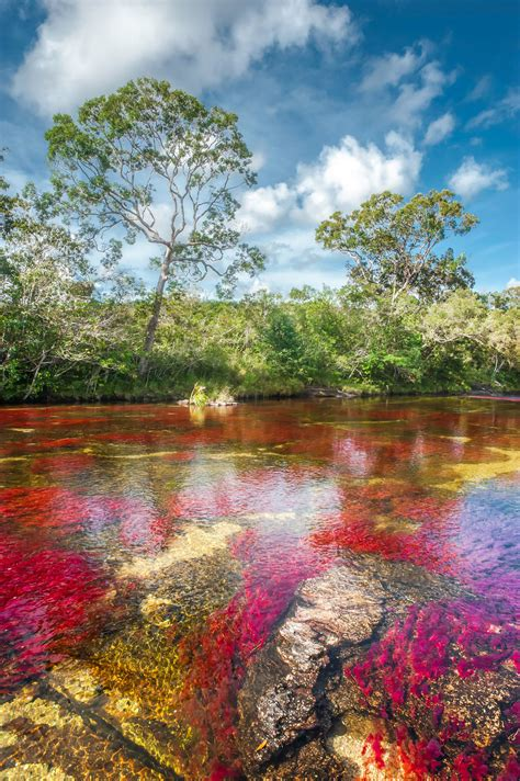 five most amazing colorful beaches of the world ca 241 o cristales en el sector el tapete