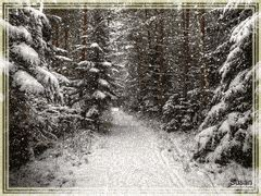 imagenes gif invierno gif paisaje gifs search find make share gfycat gifs