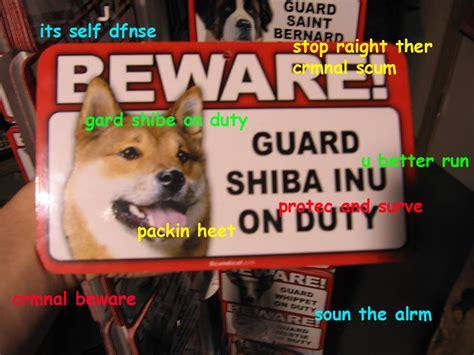 Shibe Meme Maker - beware the doge miscellaneous yugioh card maker forum