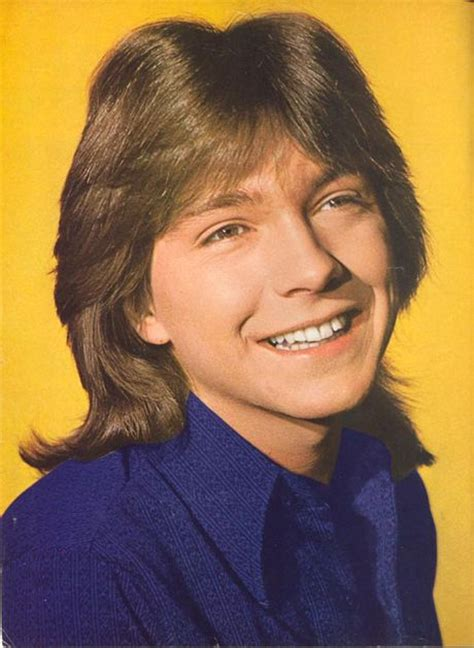 shag haircuts for men from th 70s great teen idol tresses starring justin bieber s hair