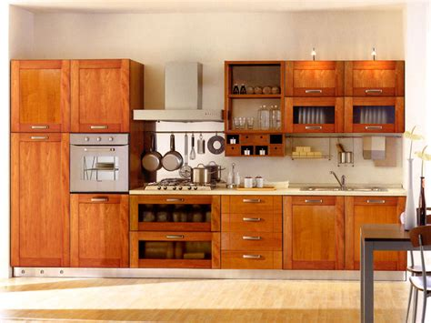 wooden kitchen cabinets designs kitchen cabinet designs 13 photos kerala home design