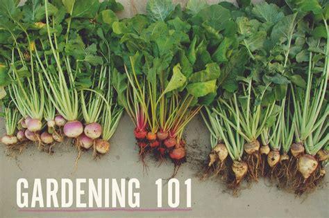 gardening 101 a beautiful mess