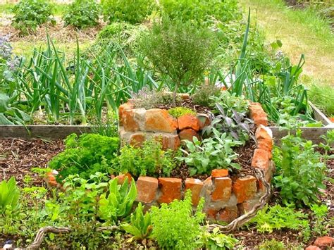 Garden Allotment Ideas Allotment Inspiration Allotment Ideas Pinterest