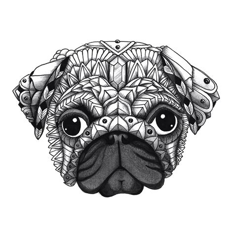 pug coloring pug coloring pages coloringsuite