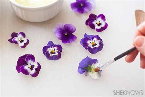 How To Make Paper Violets - easy and edible sugared violets