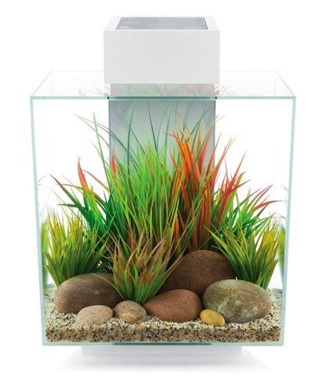 Aquarium V Ii aquarium 187 edge ii 171 kaufen otto