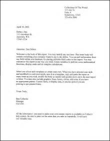 Letter Template by Downloads Debtor Letter Debtor Letter Template 3