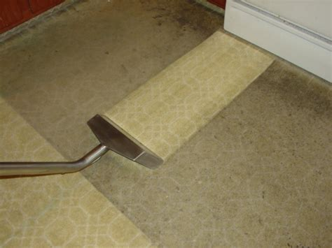 carpet cleaning upholstery cleaners water damage
