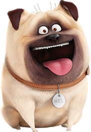 mel the pug mel the secret of pets heroes wiki fandom powered by wikia
