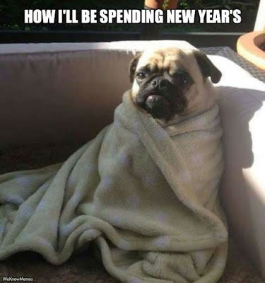New Dog Meme - happy new year meme 2018 most funny happy new year