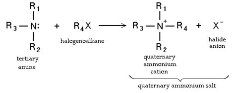 Protonated Amine by Organic Chemistry Amines Wikibooks Open Books For An