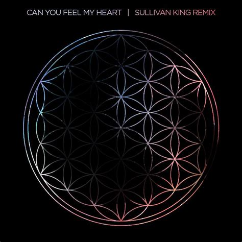 download mp3 can you feel my heart bass growls from hell in sullivan king s remix of quot can you