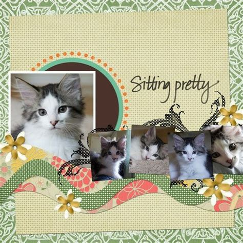 scrapbook layout cat photo cat scrapbook layouts and layout on pinterest