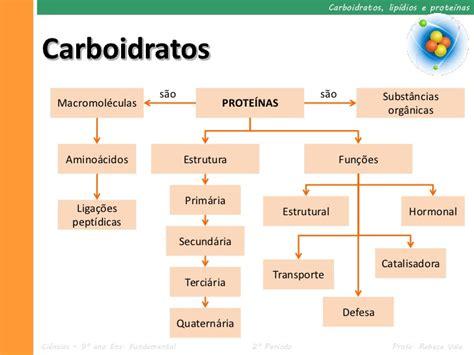 proteinas e carboidratos ii 2 carboidratos lip 237 dios e prote 237 nas