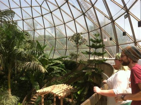 Greater Des Moines Botanical Garden Koi Fish Picture Of Greater Des Moines Botanical Garden Des Moines Tripadvisor