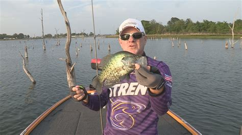 southwest outdoors report  lake fork texas crappie