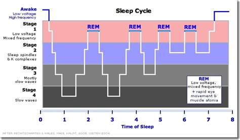 pattern analysis in psychology understanding sleep for optimal recovery productivity by