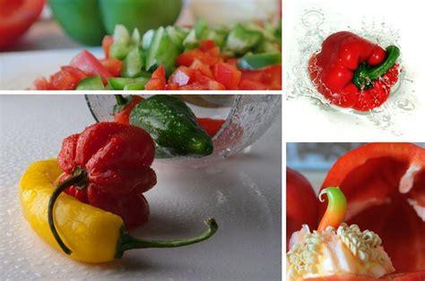 Garten Paprika Pflanzen by Paprika Im Garten Anbauen Pflegen Ernten