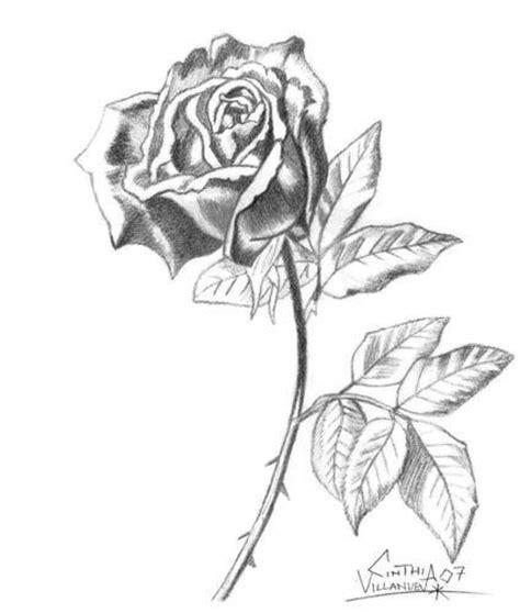 imagenes para dibujar rosas a lapiz imagenes de rosas a l 225 piz my blog