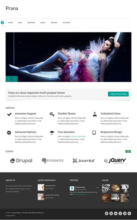 wordpress review layout prana theme review designorbital read truth