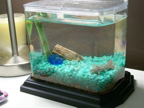 Small Aquarium Pets At Home Eco Aquarium From Creations Company