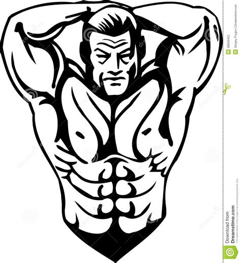 bodybuilding  powerlifting vector stock